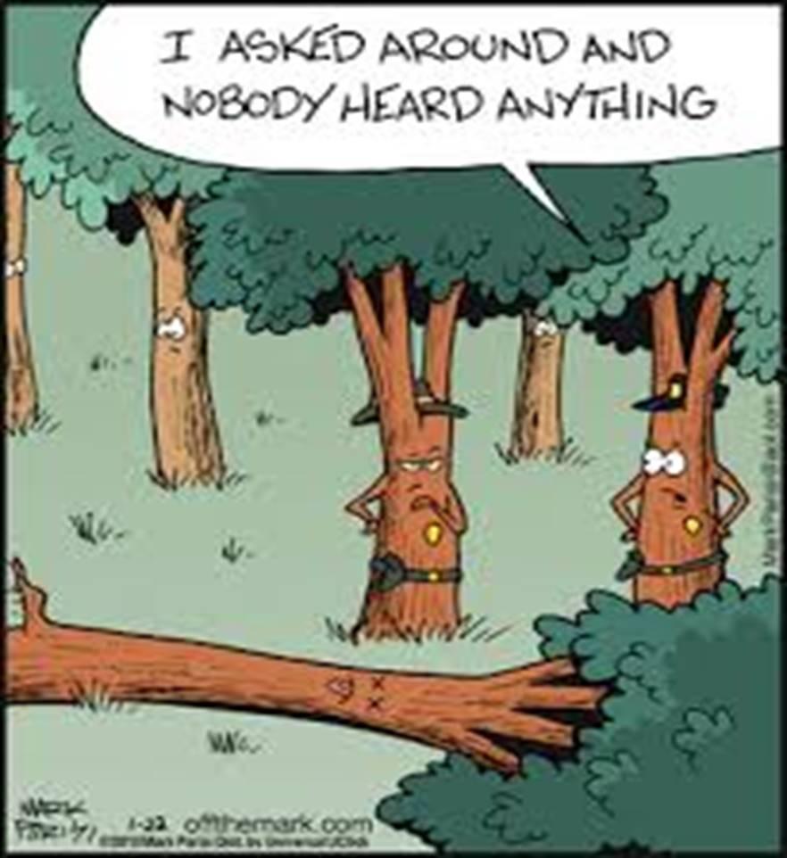 TreeFalls